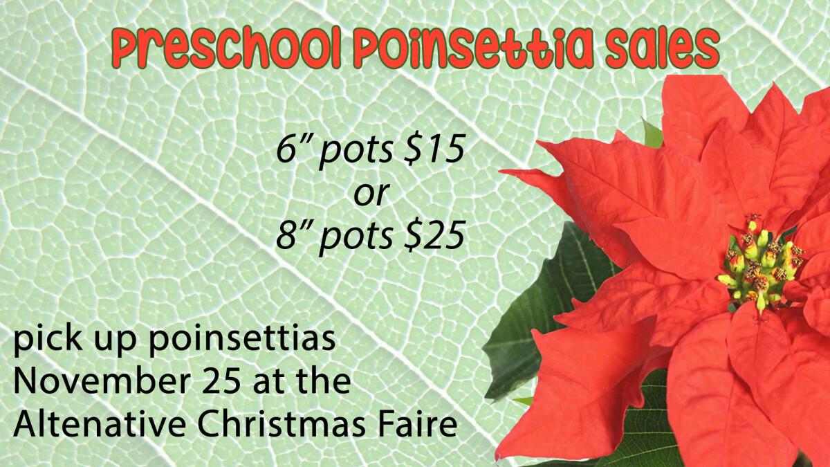 Preschool Poinsettia sales